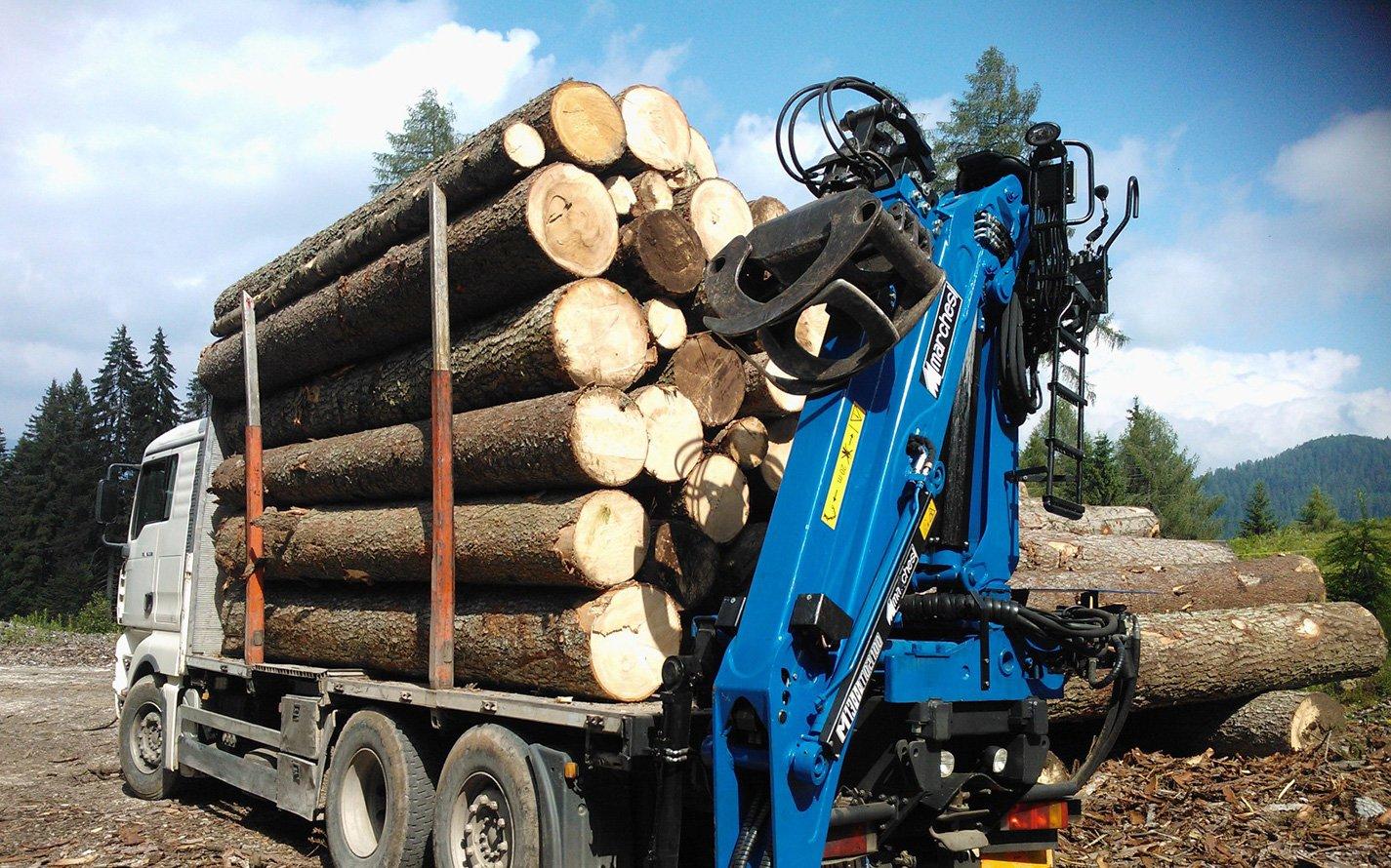 Gru forestale | Gru per camion
