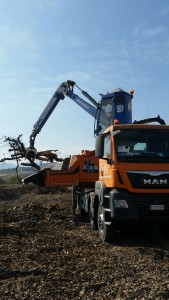 Marchesi crane on Doppstadt chipper
