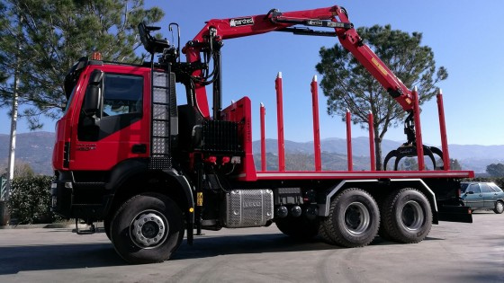 Marchesi Forestry crane