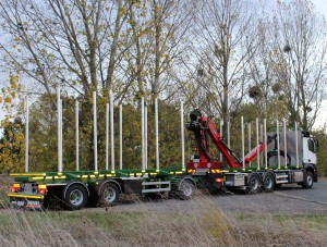 Forestry crane for France