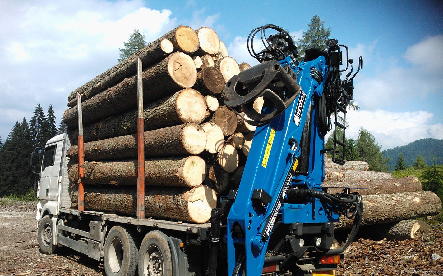forestry-cranes-or-timber-loaders-for-installation-on-a-truck