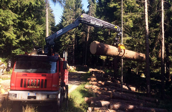 timber-cranes-for-log-transport-z-series