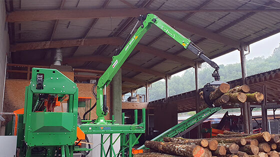 marchesi-stationary-crane-for-firewood-processor