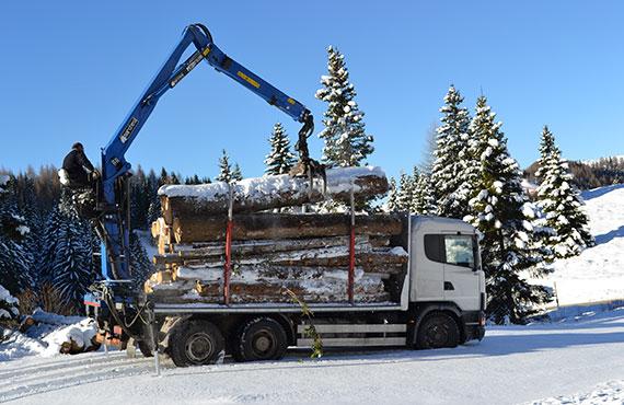 timber-crane-for-log-transport-t-series