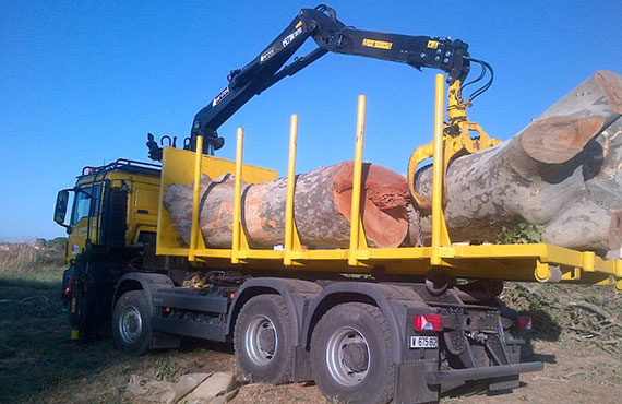 timber-cranes-for-long-log-transport-z-series